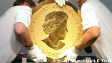 People handling the Big Maple Leaf coin (picture-alliance/dpa/H. K. Techt)