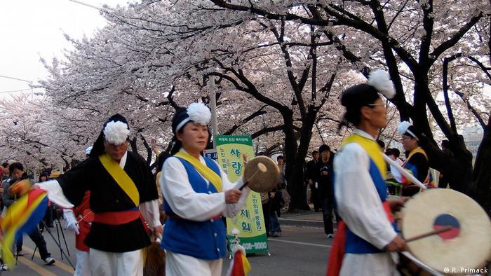 Japan Kirschblütenfest (R. Primack)