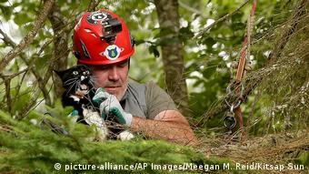 Rettung einer Katze