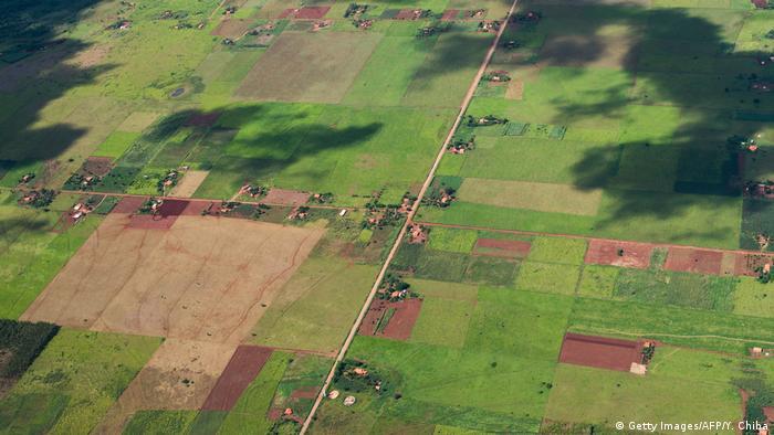 Brasilien - Luftaufnahme - Landwirtschaft