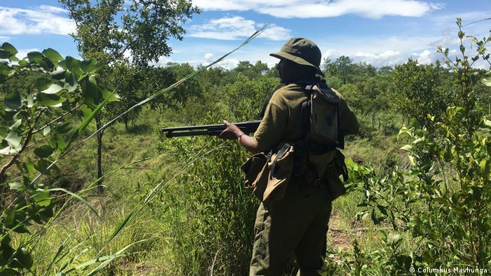 Global Ideas Simbabwe Ranger