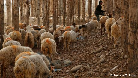 China Xinjiang Uiguren (Reuters/T. Peter)