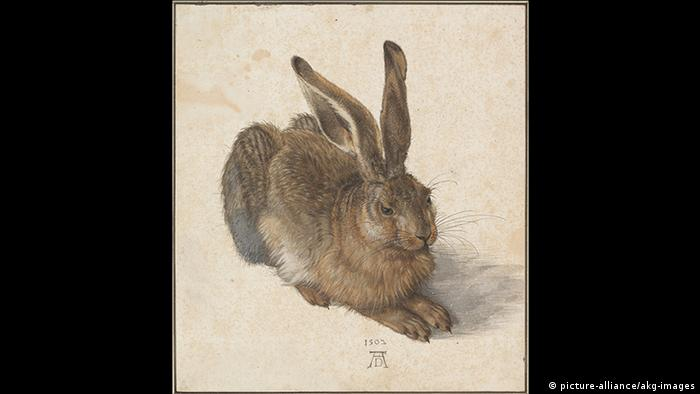 Albrecht Dürer: Young Hare (picture-alliance/akg-images)