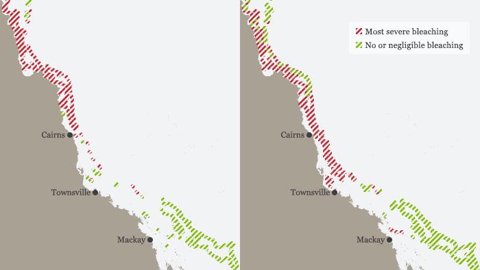 Infografik Karte Coral reefs are bleaching