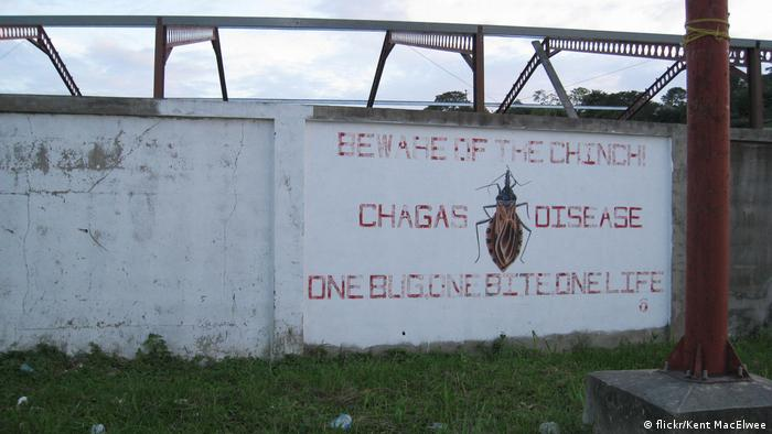 Chagas-Krankheit | Warnung in San Ignacio Belize (flickr/Kent MacElwee )