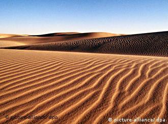 A sun-soaked desert landscape