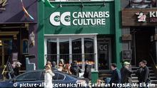 Kanada Toronto Marijuana Dispensary