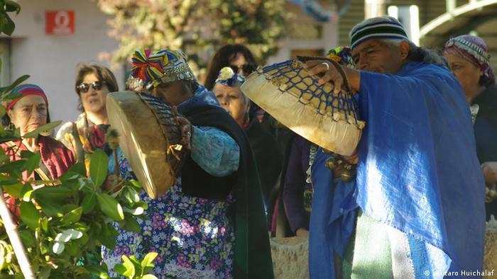 Chile Kume Mogen in Temuco (Lautaro Huichalaf)
