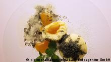 SA0408 Speisen allgemein Kartoffelgerichte Marillenknödel mit Mohn food potatoe dishes dumpling with poppy | Verwendung weltweit