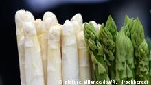 white and green asparagus (picture-alliance/dpa/R. Hirschberger )