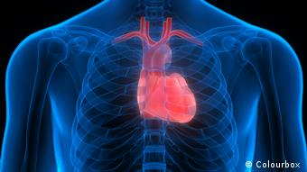 Багато людей із синдромом Дауна мають вроджені вади серця