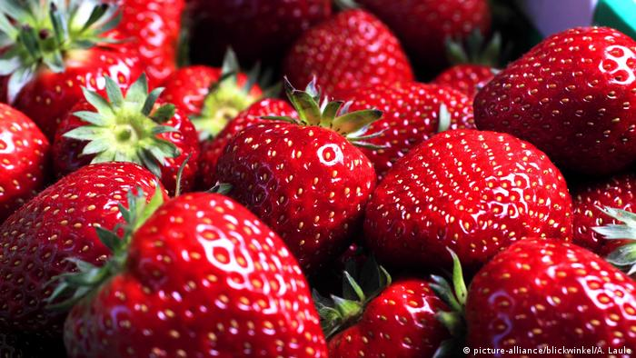 A bunch of strawberries in a bowl (picture-alliance/blickwinkel/A. Laule)