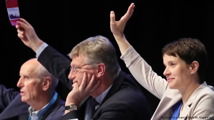 Deutschland AfD Bundesparteitag in Köln (picture-alliance/dpa/M. Kappeler)
