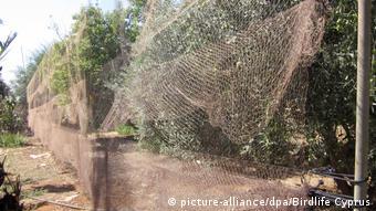 Παράνομα συρματοπλέγματα λαθροκυνηγών στην Κύπρο