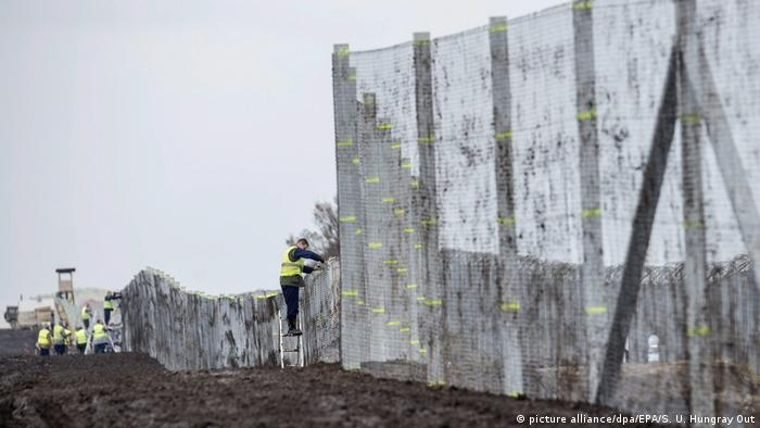 Ungarn Zaun an der Grenze zu Serbien (picture alliance/dpa/EPA/S. U. Hungray Out)