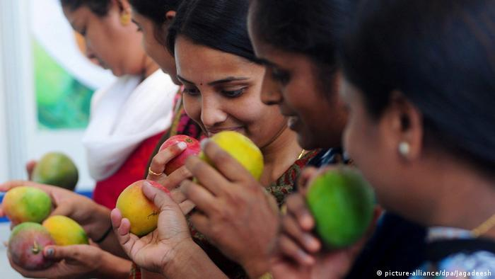 Indien Bangalore Mango Messe (picture-alliance/dpa/Jagadeesh)
