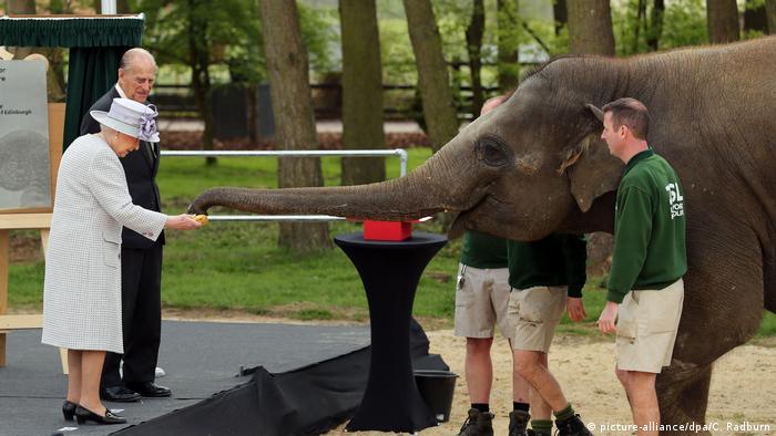 Queen Elizabeth und Prinz Philip füttern Elefanten (picture-alliance/dpa/C. Radburn)