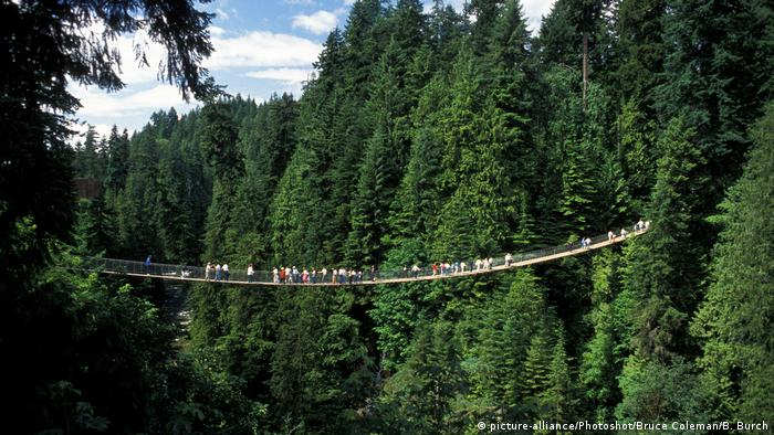 N. Vancouver Capilano suspension bridge.......... (picture-alliance/Photoshot/Bruce Coleman/B. Burch)