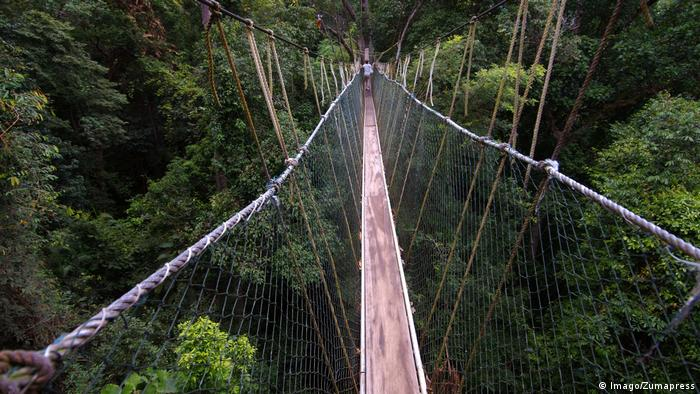 Oct 15 2014 Malaysia Suspension bridge in jungle Kuala Tahan Taman Negara National Park Mal (Imago/Zumapress)