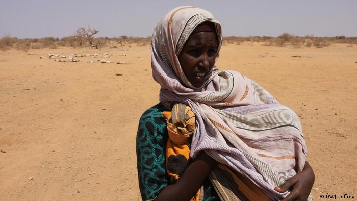 Äthiopien Gode - Dürre-Krise (DW/J. Jeffrey)