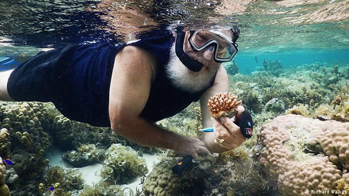Coral farming, Fiji