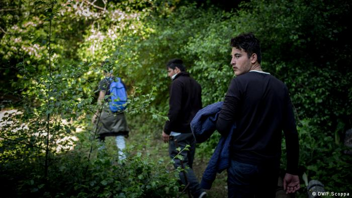 Three teenage boys walk through the woods