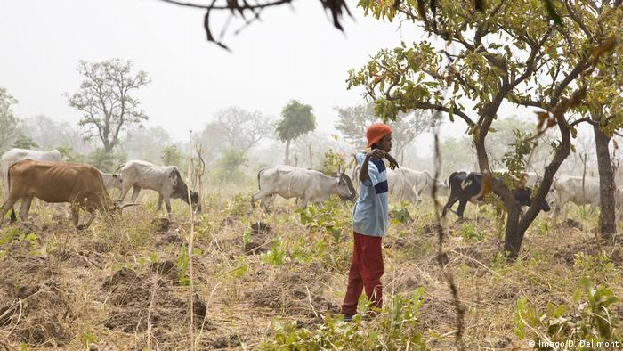 Ghana Junger Mann in der Zabzugu-Tatale Region (Imago/D. Delimont)