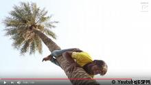Screenshot Youtube - Man Climbs Tree Backwards (Youtube/ESPM)
