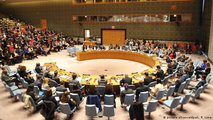 USA UN Sicherheitsrat (picture alliance/dpa/L. R. Lima)