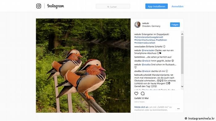 Screenshot Instagram Account nela.kr