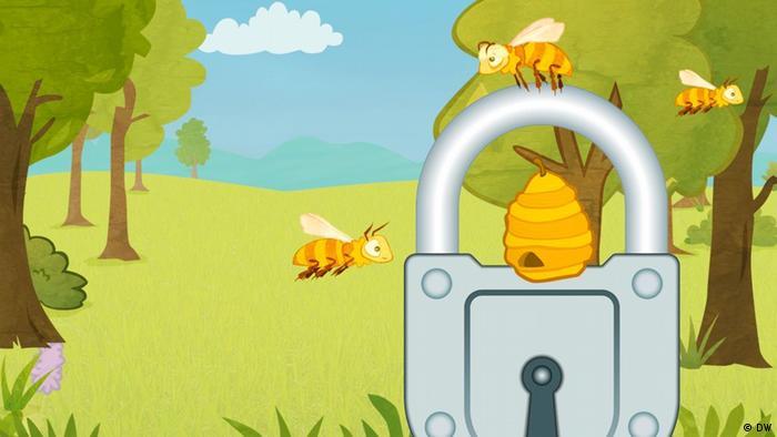 Deutschkurse   Bienenretter   Dantenschutz (DW)
