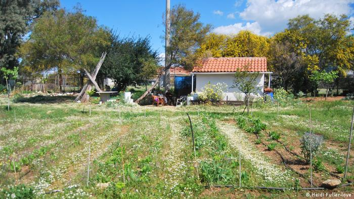 Elliniko community gardens in Greece. Photo credit: Heidi Fuller-Iove.