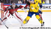 Ice hockey: Canada vs. Sweden Picture-Alliance/dpa/M. Skolimowska)