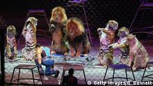 Ringling Bros Barnum und Bailey Circus (Getty Images/B. Bennett)