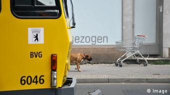 Berlin tram and a dog and shopping cart in the background (Imago)