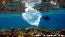 ACHTUNG: DIESER BEITRAG DARF NICHT VOR DER SPERRFRIST, 10. MÄRZ 20.00 UHR, VERÖFFENTLICHT WERDEN! EIN BRUCH DES EMBARGOS KÖNNTE DIE BERICHTERSTATTUNG ÜBER STUDIEN EMPFINDLICH EINSCHRÄNKEN - FILE- Fish swim near a plastic bag along a coral reef off the coast of the Red Sea resort town of Naama Bay, Egypt, 01 August 2007. EPA/MIKE NELSON (zu dpa «Leibspeise PET: Forscher entdecken Plastik-fressendes Bakterium» vom 10.03.2016) +++(c) dpa - Bildfunk+++ |