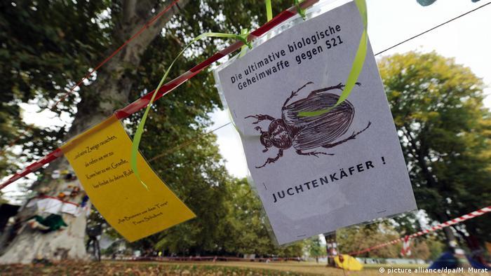 Deutschland Stuttgart 21 - Juchtenkäfer (picture alliance/dpa/M. Murat)