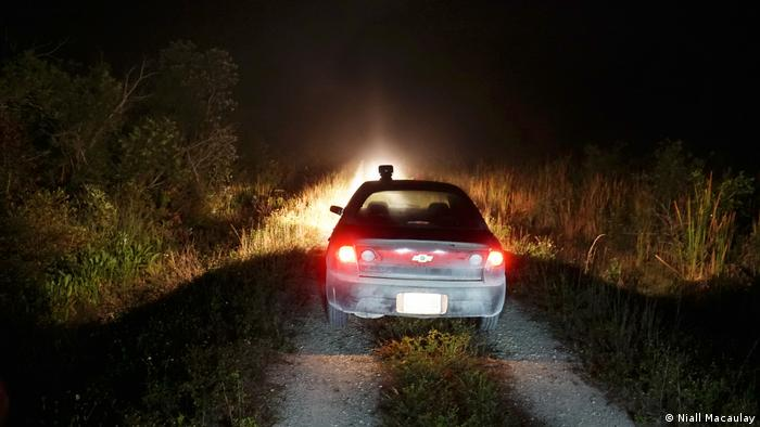 A car driving through the Everglades at nighttime