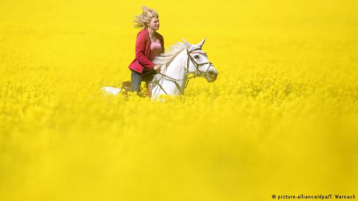 A woman gallops through a flowering rapeseed field in Wilfingen, southern Germany