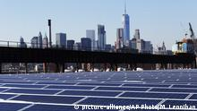 A rooftop is covered with solar panels at the Brooklyn Navy Yard in New York (picture-alliance/AP Photo/M. Lennihan)