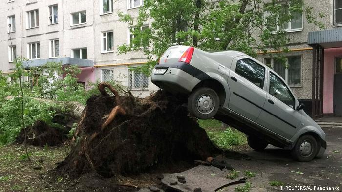 Поваленное дерево во дворе в Москве после урагана 29 мая 2017 года