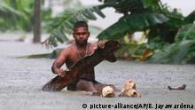 27.05.2017 Ein Mann paddelt am 27.05.2017 auf einem selbst gebauten behelfsmäßigen Floß auf einer überfluteten Straße im Dorf Wehangalla im Kalutara-Distrikt, Sri Lanka. Tagelange Regenfälle hatten im Zentrum, Süden und Westen des Landes in der Nacht zu Freitag Überschwemmungen und schwere Erdrutsche ausgelöst. (zu dpa Zahl der Toten nach Unwettern in Sri Lanka auf 100 gestiegen am 27.05.2017) Foto: Eranga Jayawardena/AP/dpa +++(c) dpa - Bildfunk+++ |
