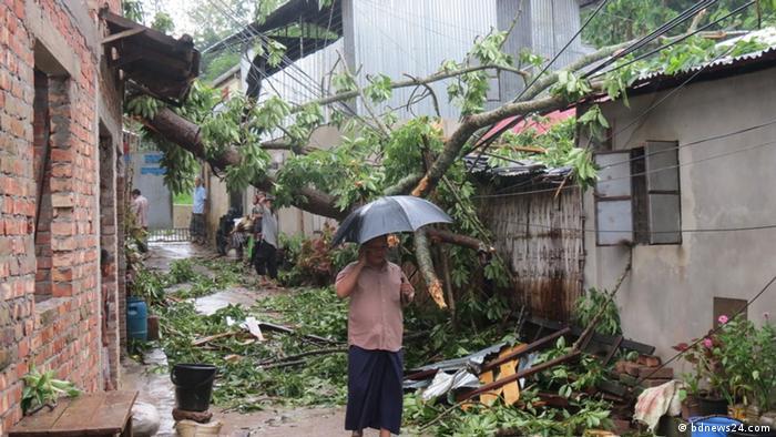 A man stands beneath an umbrella beneath felled trees
