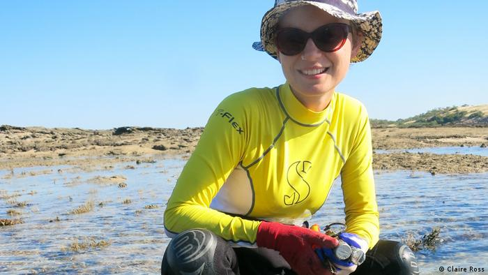 Verena Schoepf investigating coral communities in the Kimberley reef area (Claire Ross)