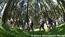 ARCHIV - Teilnehmer des 114. Deutschen Wandertages wandern am 13.08.2014 bei Bad Harzburg im Harz (Niedersachsen) durch den Wald. Niedersachsens Tourismusbranche steuert nach Angaben vom 26.08.2016 auf ihr viertes Rekordjahr in Folge zu. Foto: Swen Pförtner/dpa (zu dpa «Niedersachsens Tourismusbranche bleibt auf Rekordkurs» vom 26.08.2016) +++(c) dpa - Bildfunk+++ | Verwendung weltweit