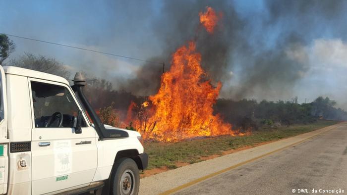 Mosambik Inhambane - unkontrollierte Waldbrände