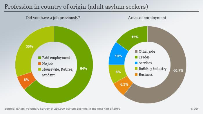 Infografik zum Schwerpunkt InfoMigrants Thema 3 Grafik 2 Beruf Heimatland ENG