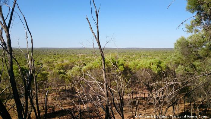 Blick auf das Gebiet der Doongmabulla Springs am Standort der Carmichael Mine in Australien