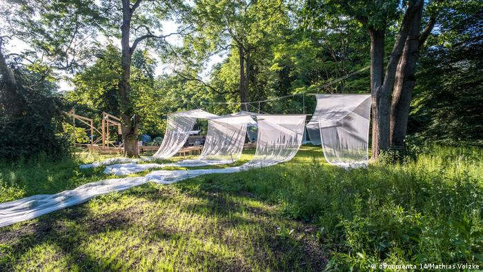 Field, forest, clothesline with long draped white gauze (documenta 14/Mathias Völzke)