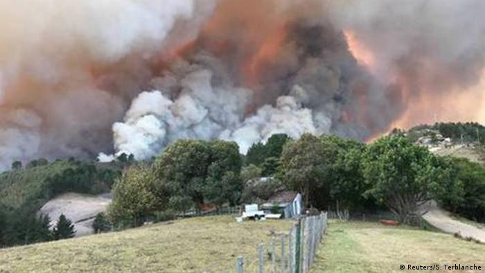 Südafrika Waldbrände